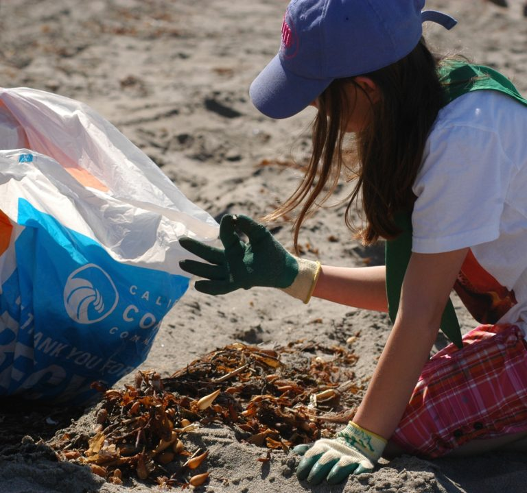 Student Cleaning Up Beach Save Our Shores