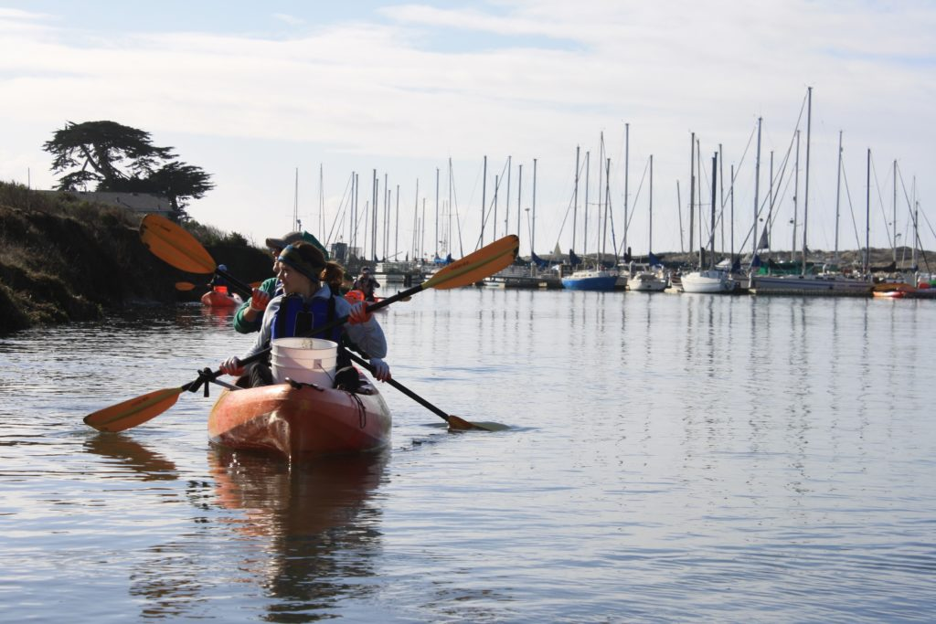 Save Our Shores Kayak Shay Hlavaty