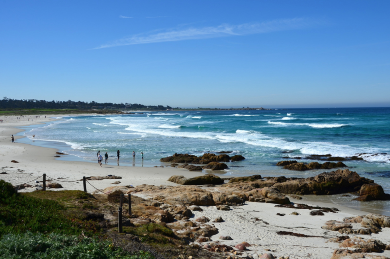 Asilomar State Beach Save Our Shores