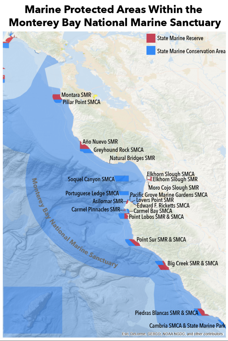 Save Our Shores Marine Protected Areas Within the Monterey Bay National Marine Sanctuary