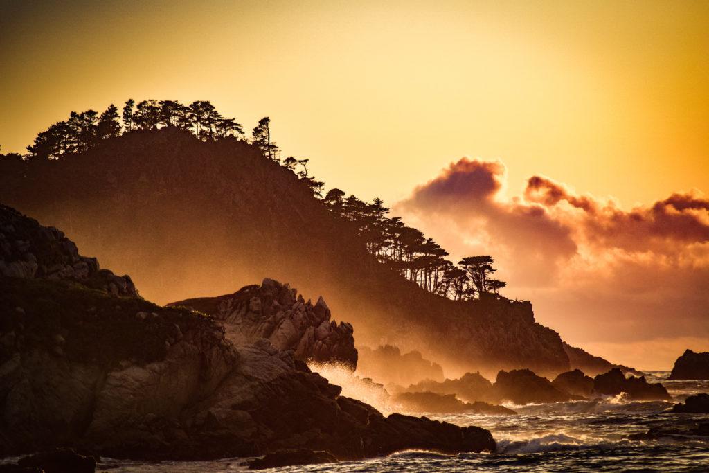 Copy of Olson, Amelia 1 Point Lobos 2018 SAve Our Shores