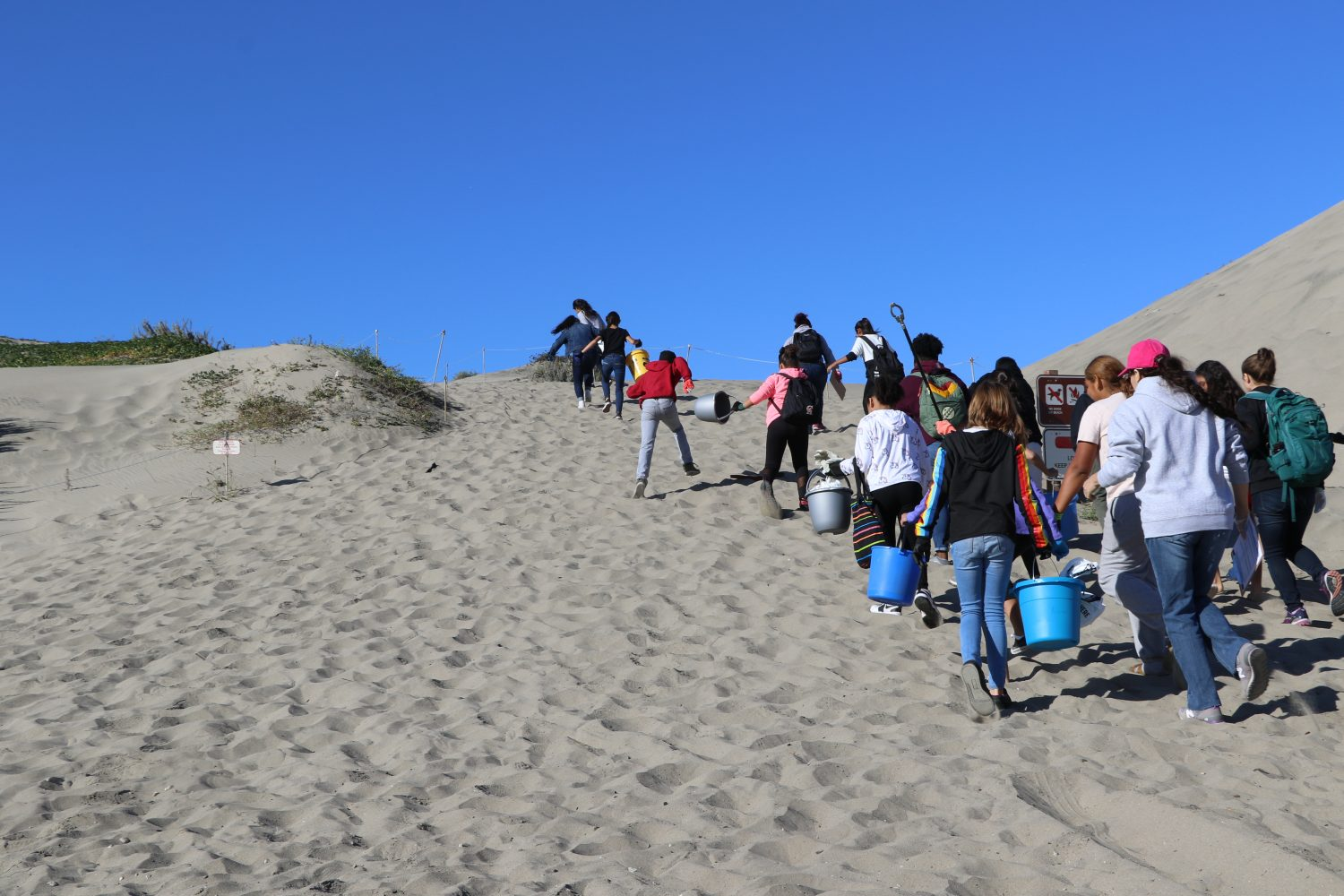 A dozen boys and girls walk up a sandy hill with buckets, gloves, and grabbers in hand on a clear blue day.