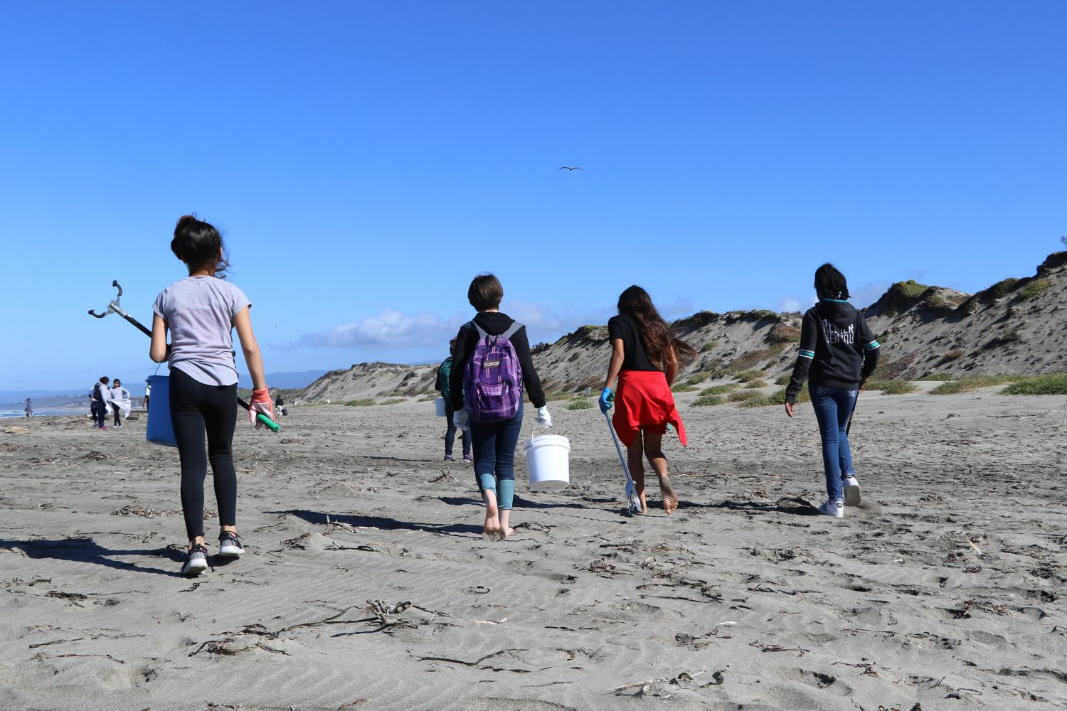 Four girls walk towards dunes on a beach with buckets, gloves, and grabbers in hand.