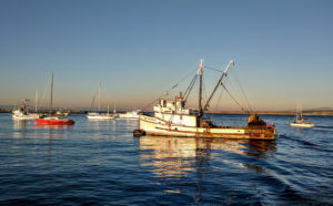 Fishing boats and sailing boats sit in the Monterey Bay at sunset near the Santa Cruz Harbor.
