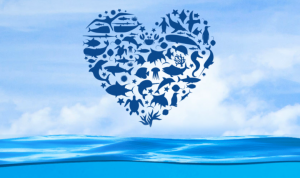 #LOVE30x30 — Taking bold action to protect our ocean @ Online